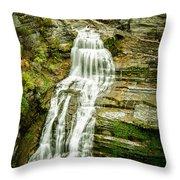 Lucifer Falls Treman Park Throw Pillow