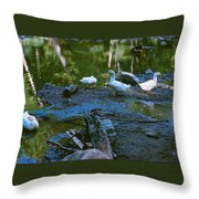 Lucky Ducks Throw Pillow