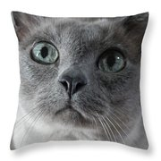 Lucy Grace Throw Pillow