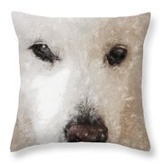 Lucy Light Color Pencil Throw Pillow