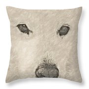 Lucy Pastel Highlight Throw Pillow