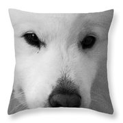 Lucy Textured Pencil Throw Pillow