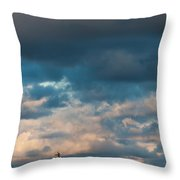 Ludington North Breakwater Lighthouse At Sunrise Throw Pillow