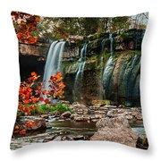 Ludlowville Falls Throw Pillow