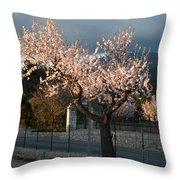 Luminous Almond Tree Throw Pillow