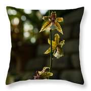Luminous Chain Of Orchids Throw Pillow