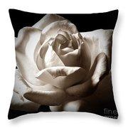 Luminous In Sepia Throw Pillow