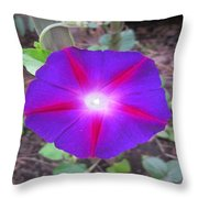 Luminous Morning Glory In Purple Shines On You Throw Pillow