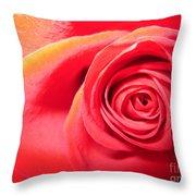 Luminous Red Rose 1 Throw Pillow