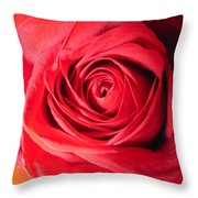 Luminous Red Rose 7 Throw Pillow
