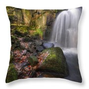 Lumsdale Falls 2.0 Throw Pillow