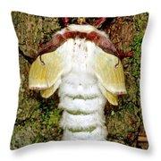 Luna Moth Actias Luna Throw Pillow