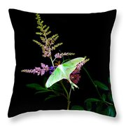 Luna Moth Astilby Flower  Throw Pillow