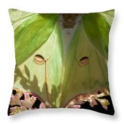 Luna Moth Faux Eyes Throw Pillow