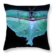 Luna Moth Mirrored Throw Pillow