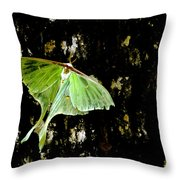 Luna Moth On Tree Throw Pillow