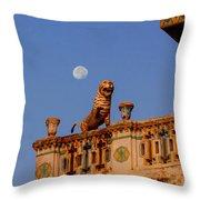 Lunar Powered Throw Pillow