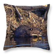 Lunch At The Lodge Throw Pillow