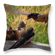 Lunch Is Served To The Fourth Baby Barn Swallow Throw Pillow