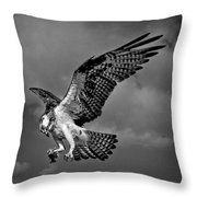 Lunch On The Go Throw Pillow