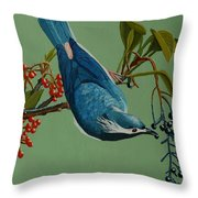 Lunch Time For Blue Bird Throw Pillow