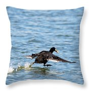 Lunch Time Gotta Run Throw Pillow