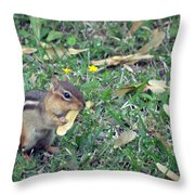 Lunch Time Photo A Throw Pillow
