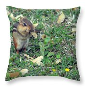 Lunch Time Photo B Throw Pillow