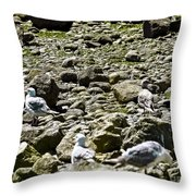 Lunch With The Gulls Throw Pillow