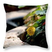 Luncheon Throw Pillow