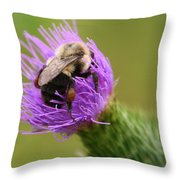 Lunching Atop A Thistle Throw Pillow