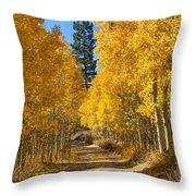Lundy Canyon Throw Pillow
