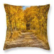 Lundy Canyon Pathway Throw Pillow