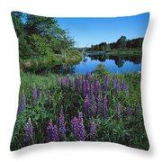 Lupin And Lake-sq Throw Pillow