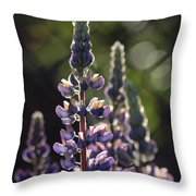 Lupine At The Gate Throw Pillow