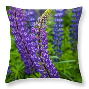 Lupine Curve Throw Pillow