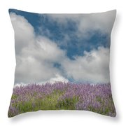 Lupine Field Under Clouds Throw Pillow