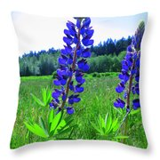 Lupine Flower Throw Pillow