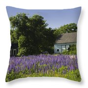 Lupine Flowers Near Round Pond Maine Throw Pillow