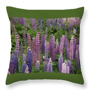 Lupine Mix Throw Pillow