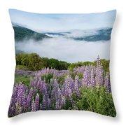 Lupine Of Bald Hills Throw Pillow