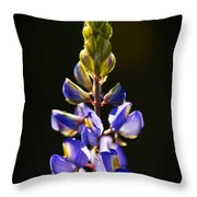 Lupine  Throw Pillow