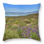 Lupines At Mono Lake Throw Pillow