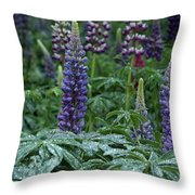 Lupines In The Rain Throw Pillow
