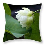 Luscious Lotus Throw Pillow