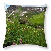 Lush Colorado Summer Landscape Throw Pillow