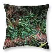 Lush Ferns Of The Forest Throw Pillow