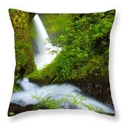 Lush Gorge Falls Throw Pillow