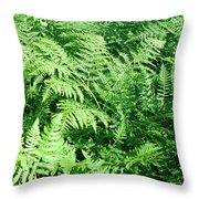 Lush Green Fern Throw Pillow