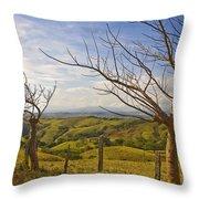 Lush Land Leafless Trees 2 Throw Pillow